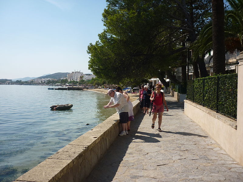 800px 061 Exploring The Pine Walk Mallorca Villas